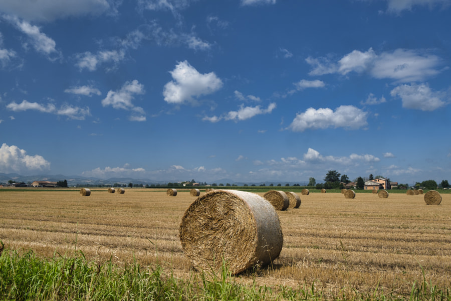 Rural Landscape near Parma (Italy) by Claudio G. Colombo on 500px.com