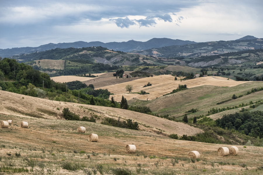Summer landscape between Guiglia and Bologna by Claudio G. Colombo on 500px.com