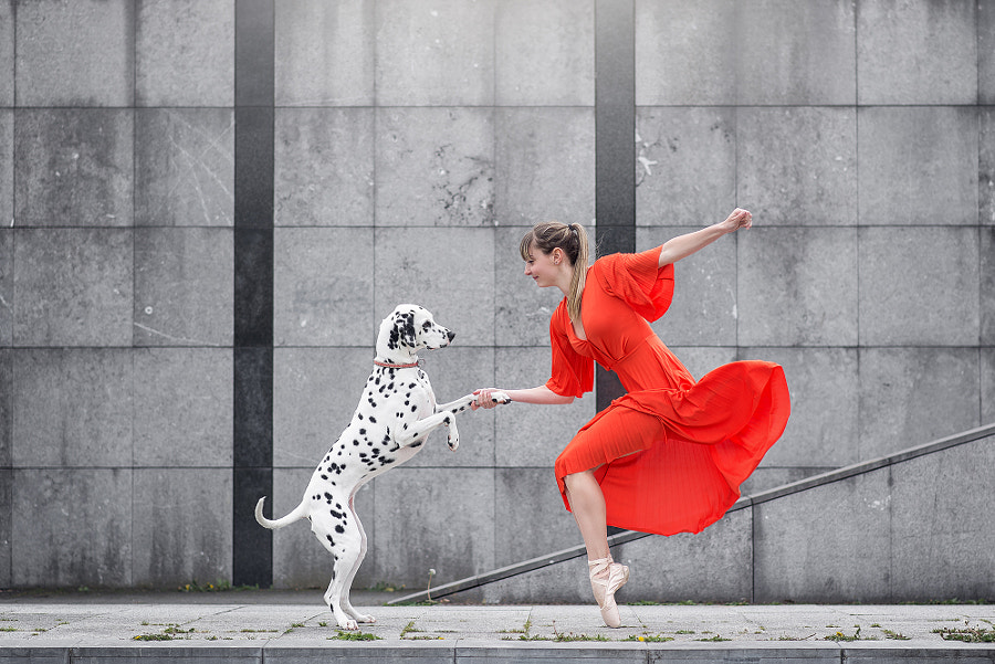 *** by Dimitry Roulland | 500px.com