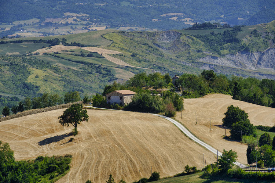 Landscape in Romagna at summer from Sogliano al Rubicone by Claudio G. Colombo on 500px.com