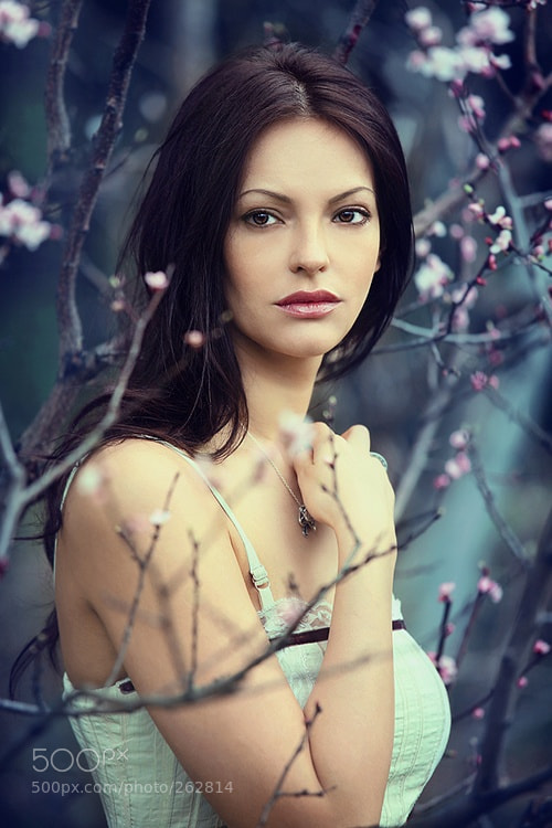Photograph Spring by Lia Mstislavskaya on 500px