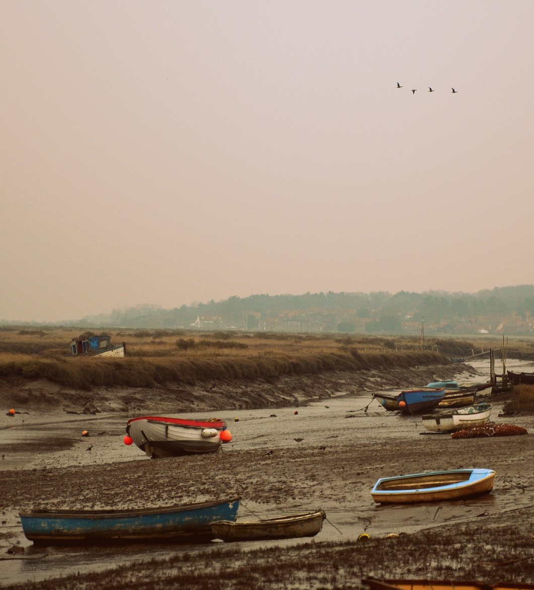 Photograph Boats in Norfolk by Mo (Victoria) Bishop on 500px