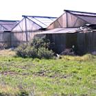 Lettuce Farm in Morgan Hill, California.