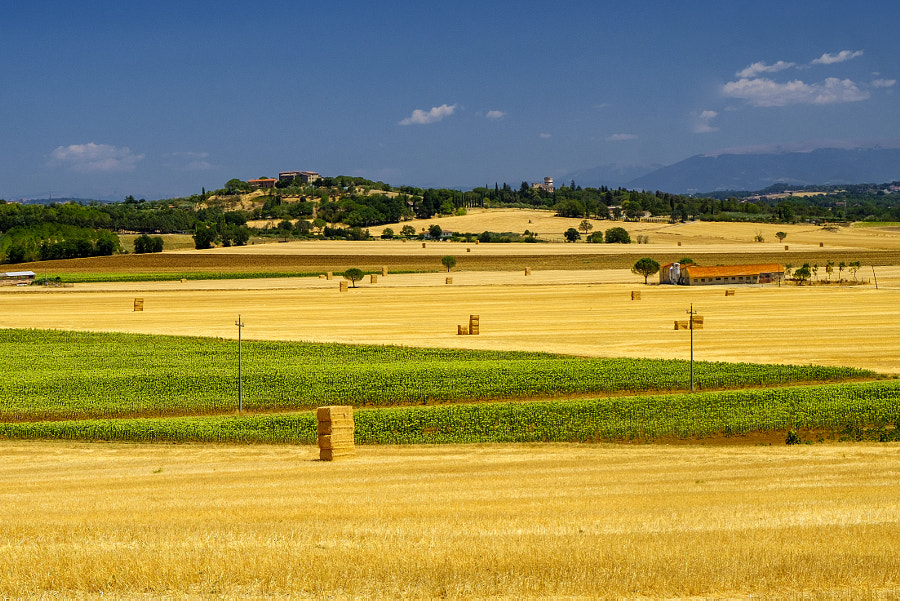 Summer landscape near Perugia by Claudio G. Colombo on 500px.com