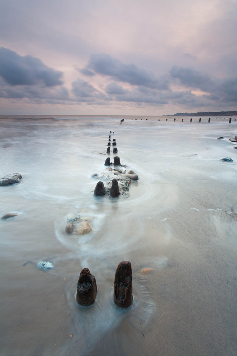 Photograph Sandsend Groyne Stumps by Carl Mickleburgh on 500px