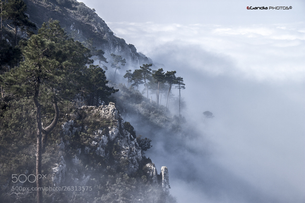 Photograph Fog and clouds by Enrique Gandia on 500px