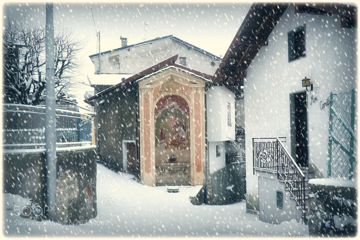 Photograph Sotto la neve by Maria Fornaca on 500px