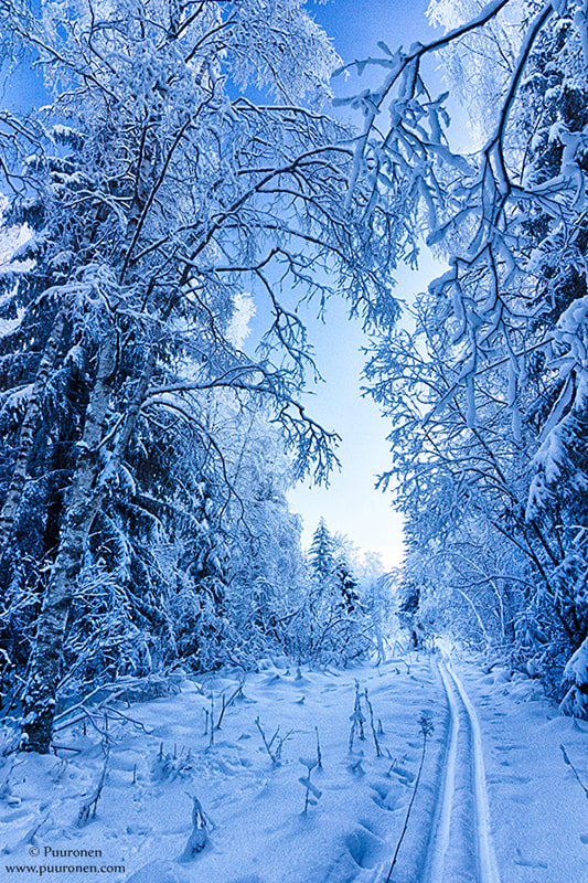 Photograph January in Finland IV by Samu Puuronen on 500px