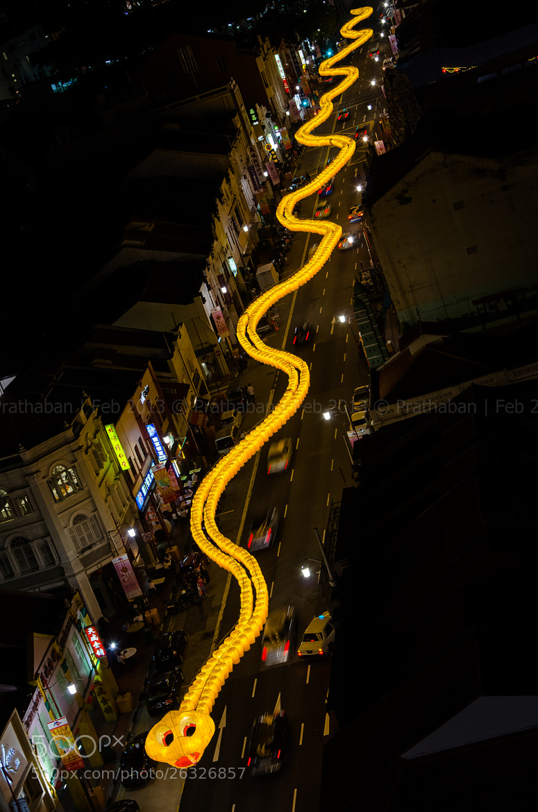 Photograph Sss Snake by Prathaban Umapathysarma on 500px