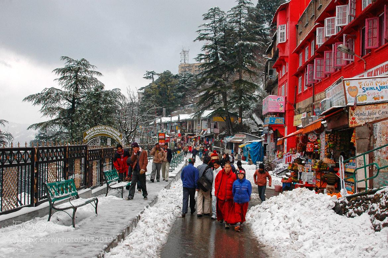 Photograph Snowfall in Shimla, Himachal Pradesh, India by Jitendra  Singh on 500px