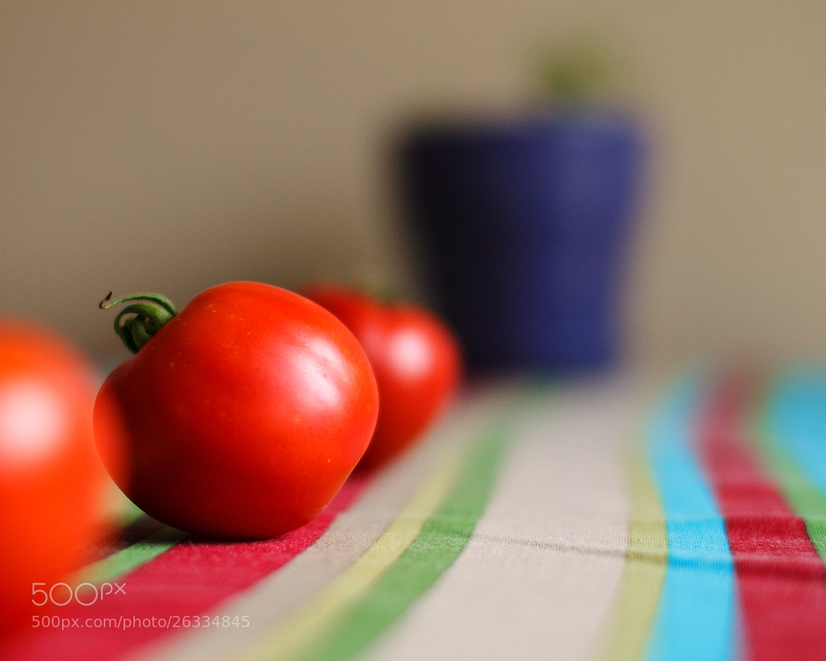 Photograph Fruit Stripes (or vegetables) by Darren LoPrinzi on 500px