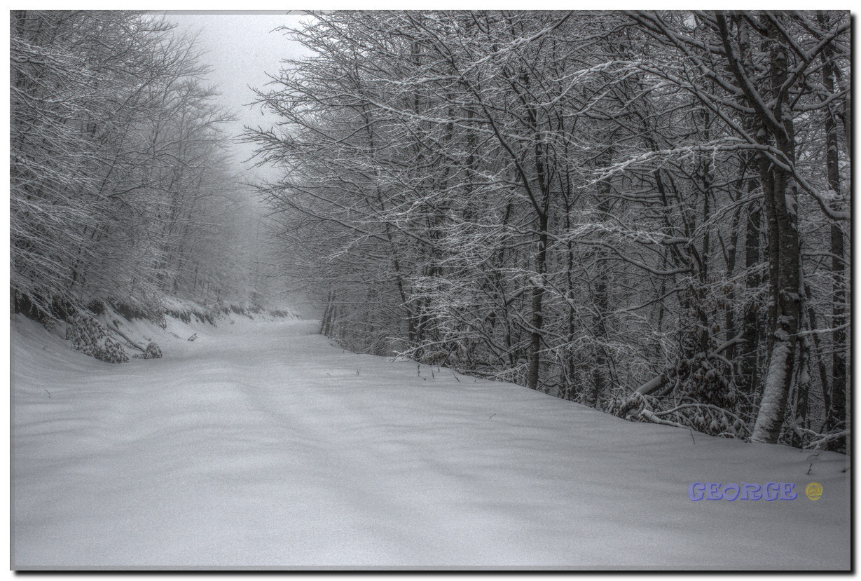 Photograph feelings of passion in the snow - George @  by George @  on 500px