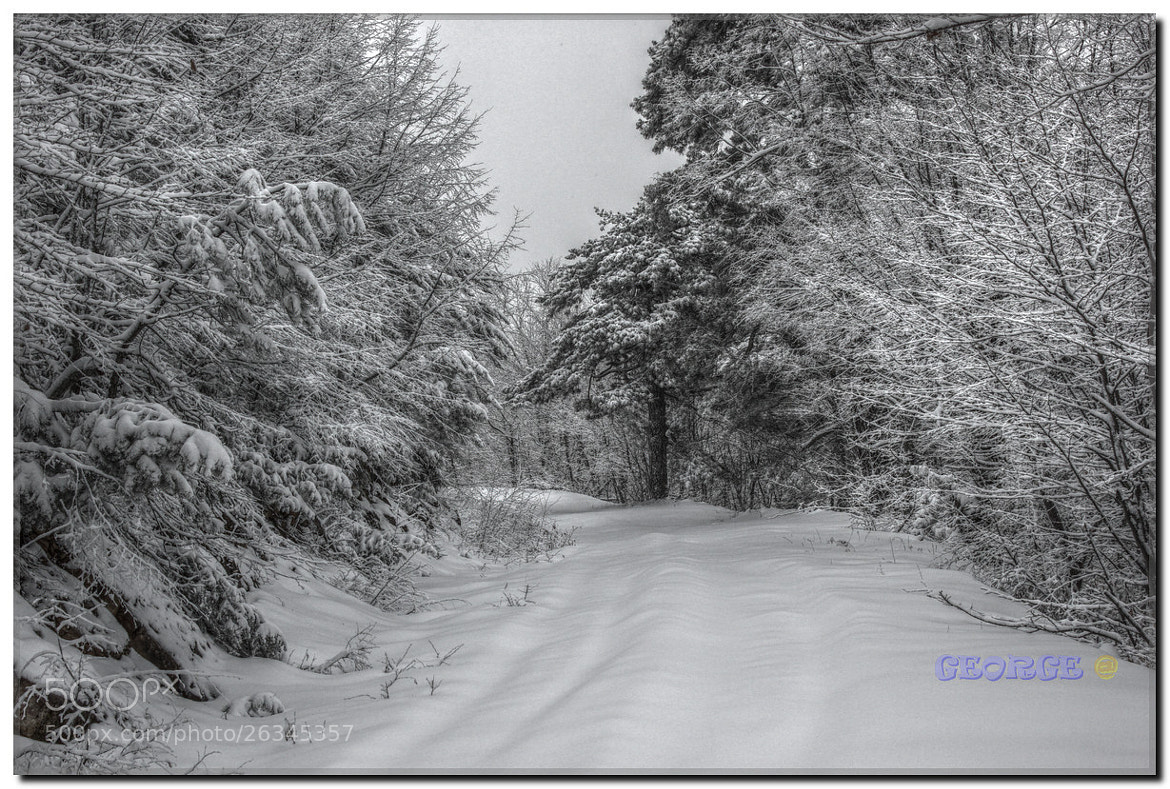 Photograph feelings of passion in the snow - George @  by George @ papaki on 500px