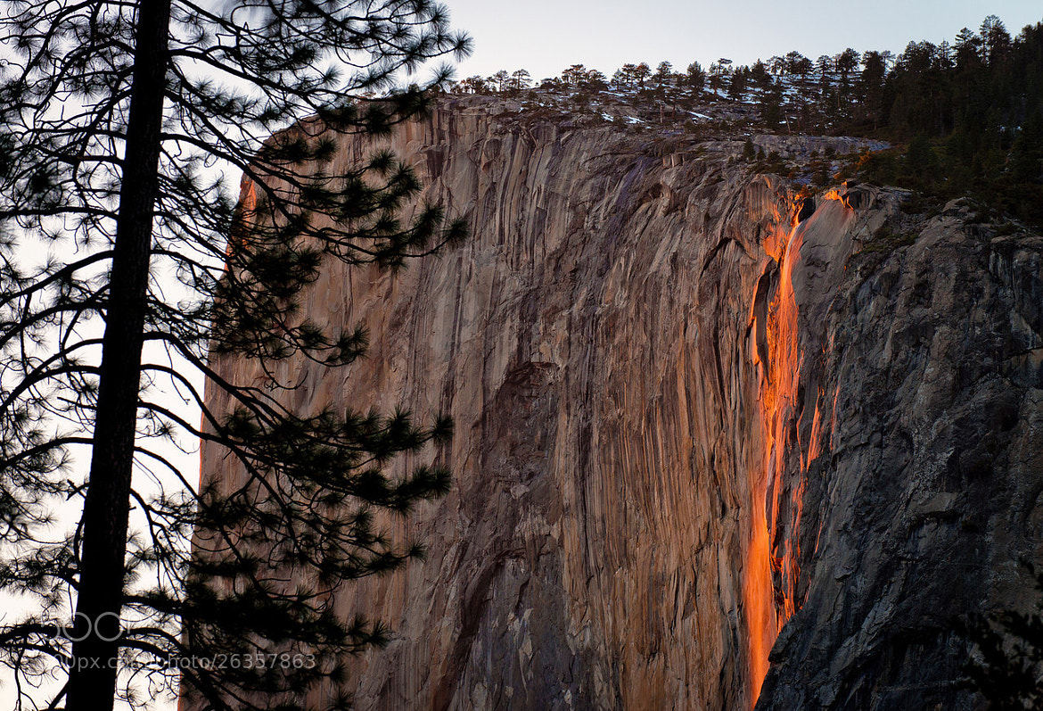 Photograph Firefall 2013 - Yosemite National Park by Tom Bricker on 500px