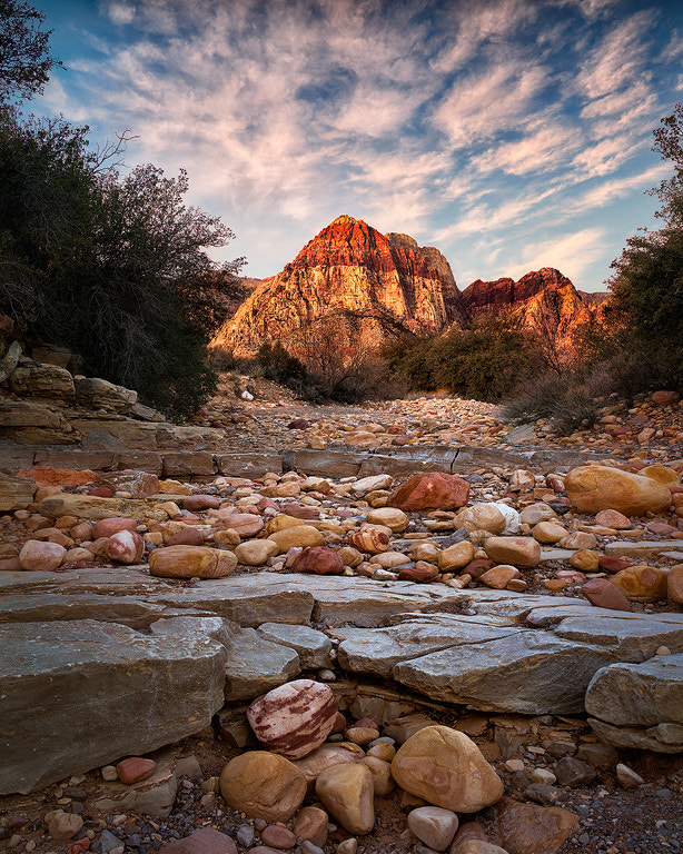 Photograph First Light At Red Rock Canyon by Steve Perry on 500px