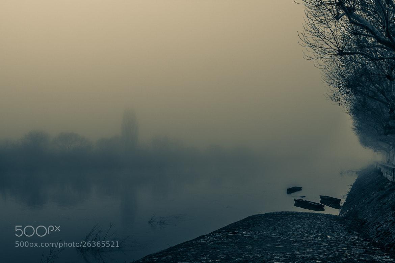 Photograph Fog... by Pierre de Izarra on 500px