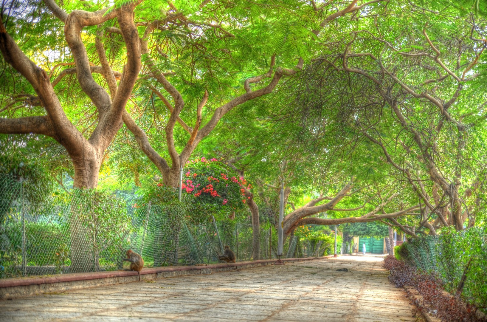 Photograph In the park by Claudia Gadea on 500px