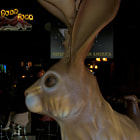 """The Jackalope is Austin's most notorious old school """"dive bar"""". Velvet paintings, a huge padded bar, great drinks, and a widely diverse crowd are it's trademarks.http://jackalopebar.com/about.htm"""
