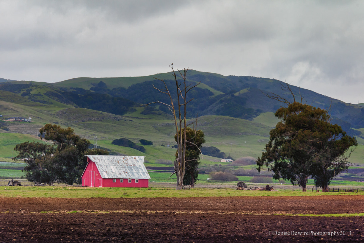 Photograph I love a Red Barn by Denise Dewire on 500px