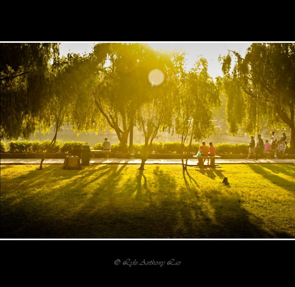 Photograph Burnham Park  by Lyle Anthony Lao on 500px