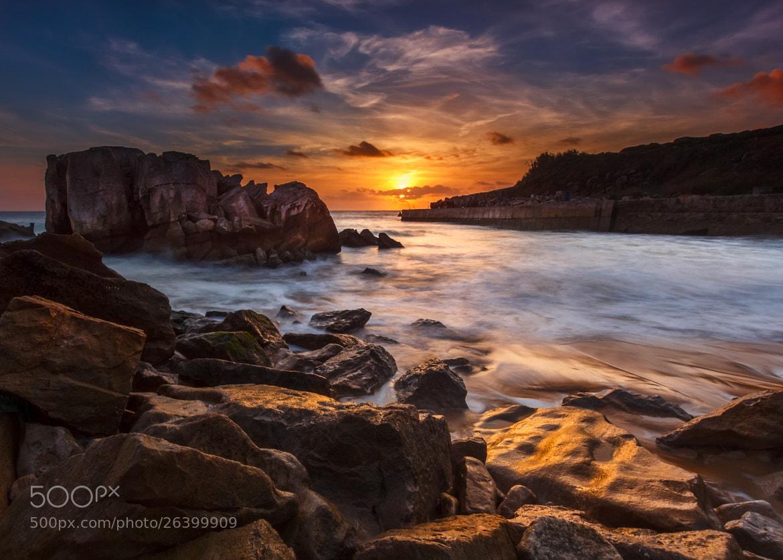 Photograph Sunshy by Jose Barbosa on 500px