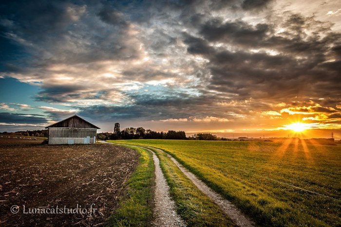 Photograph Swiss Farm at Sunshine by Cathy LunaCat Studio on 500px