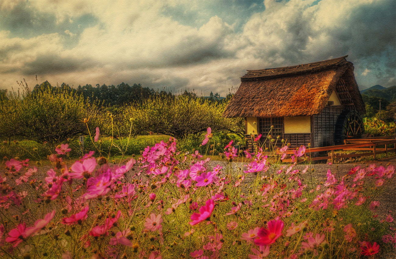 Photograph Cosmos and water mill by lemona mama on 500px