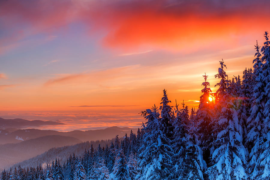 Photograph Winter Sun by Evgeni Dinev on 500px