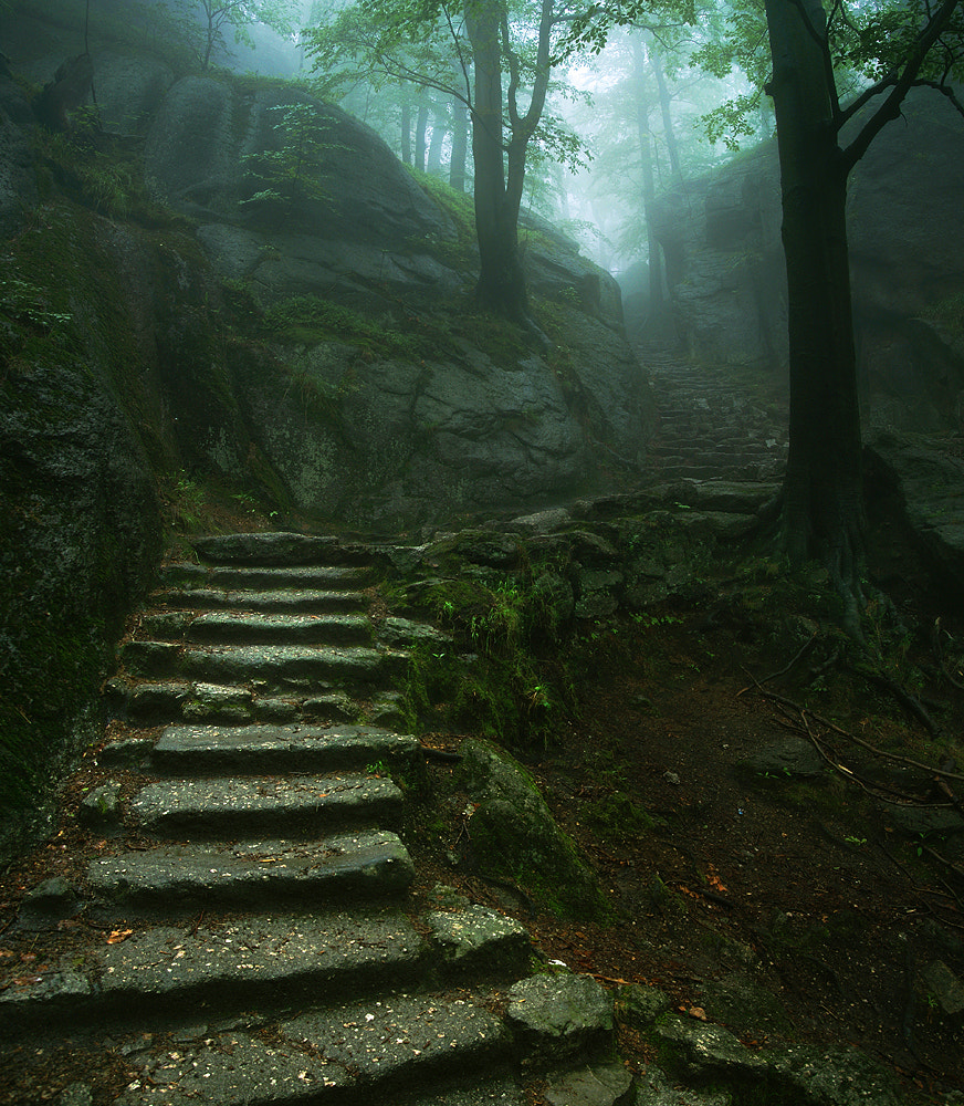 Photograph Stairway to the Castle by Karol Nienartowicz on 500px