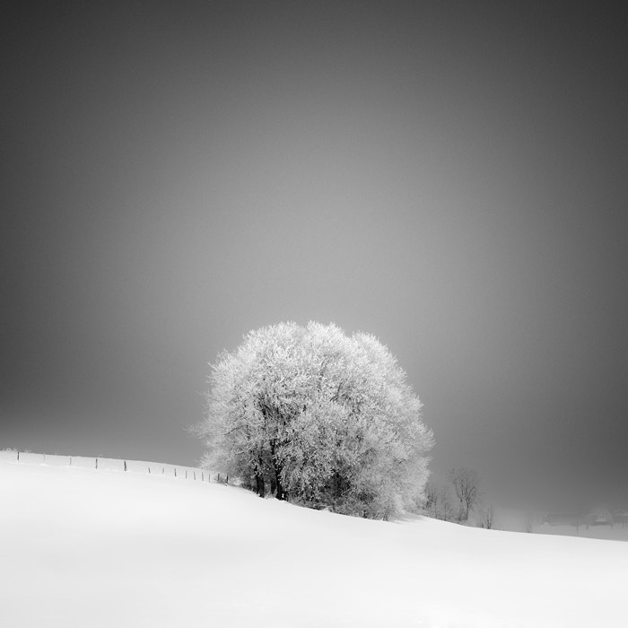 Photograph white land by Maximilian & Christian Baeuchle on 500px