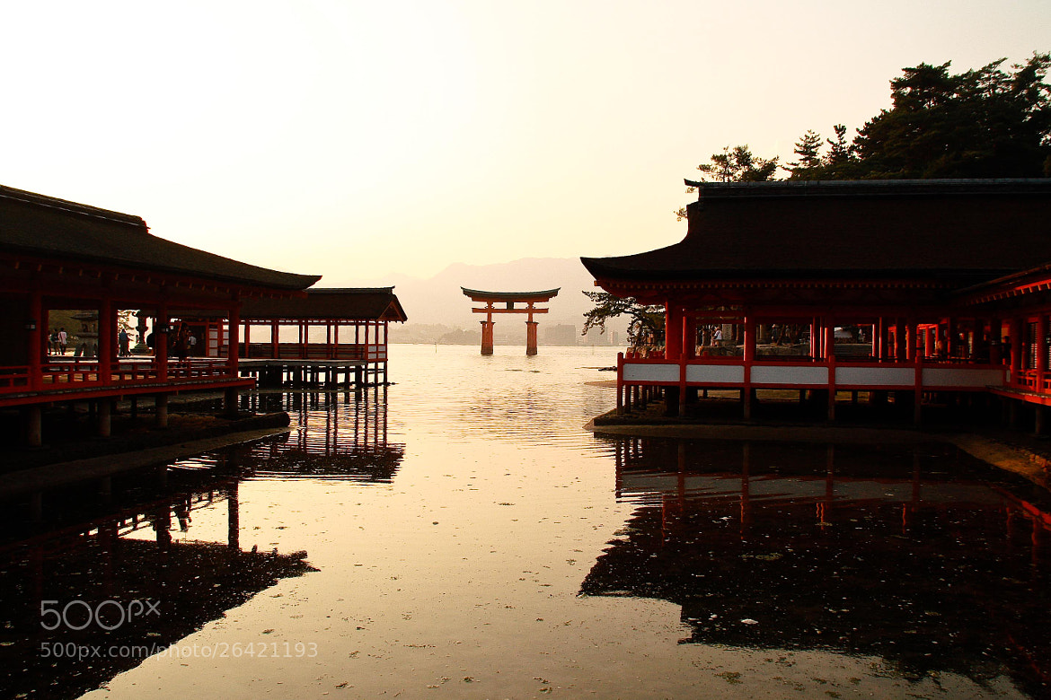 Photograph Itsukushima Shrine by alaine  on 500px