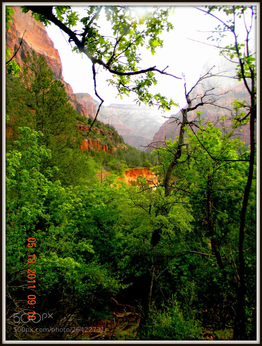 Photograph ZION 3 by Brenda Wright on 500px