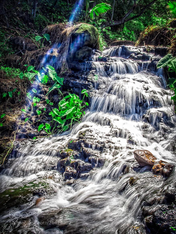 Photograph Kauai - 19 by Paul Howard on 500px