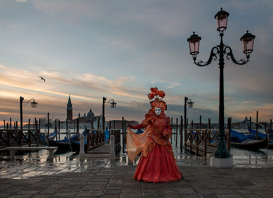 Photograph Butterfly of the Venice Carnival by Manish Gajria on 500px