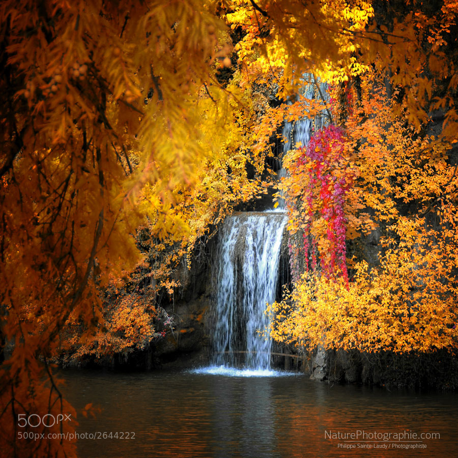 Photograph Let It Flow by Philippe Sainte-Laudy on 500px