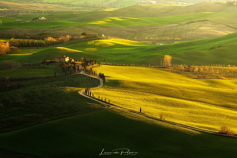 Take a Walk on the Country Side by Leonardo Papèra on 500px.com