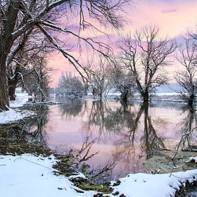 Winter landscape river Zagyva by F Levente (Levente)) on 500px.com