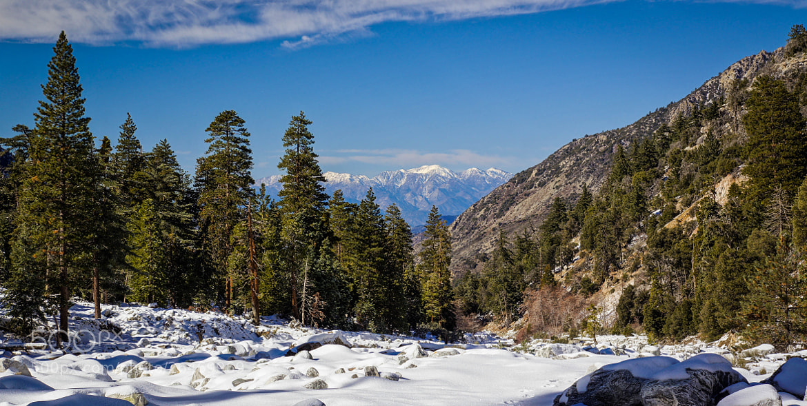Photograph Mt. Baldy White Hair by Erik Anderson on 500px
