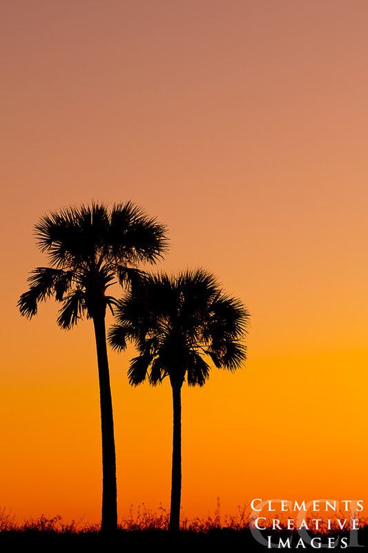 Photograph Sunset by Michael Clements on 500px