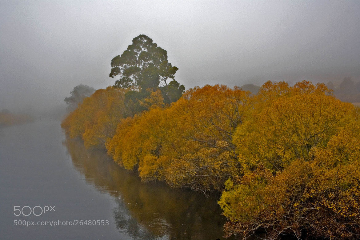 Photograph Autumn Mist by Margaret Morgan on 500px
