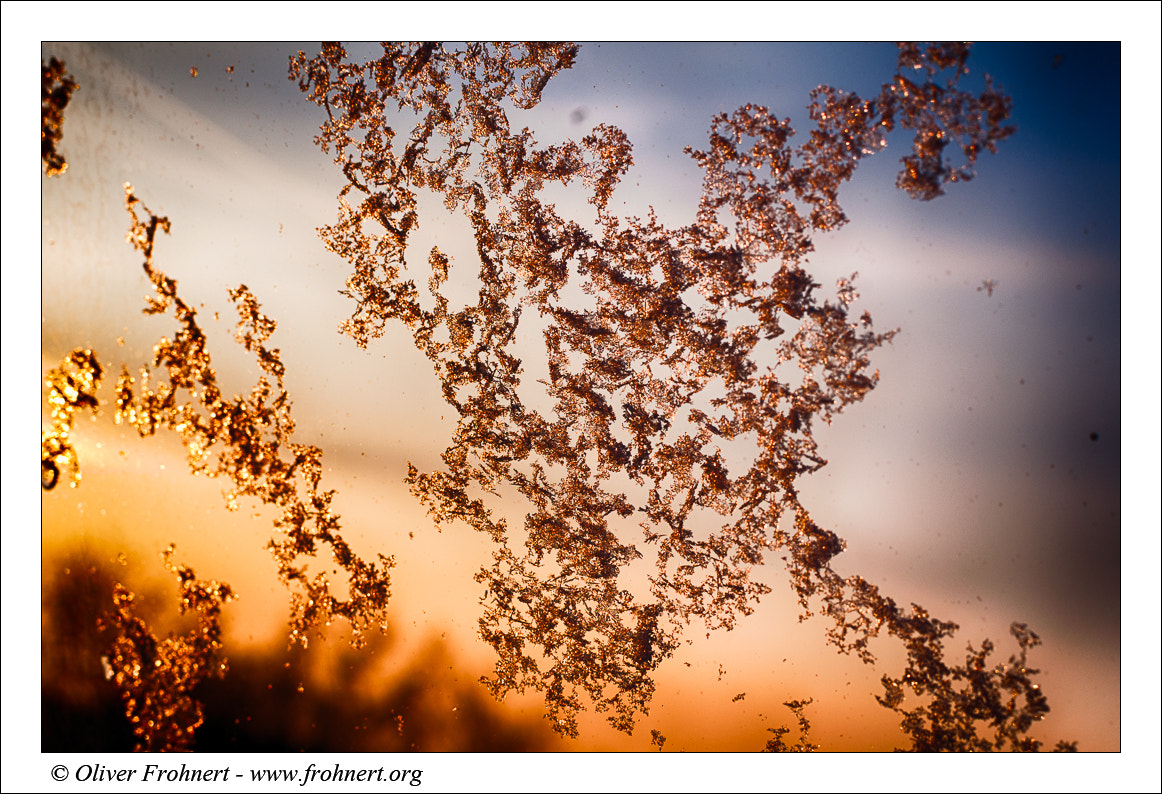 Photograph Sunset through a window by Oliver Frohnert on 500px