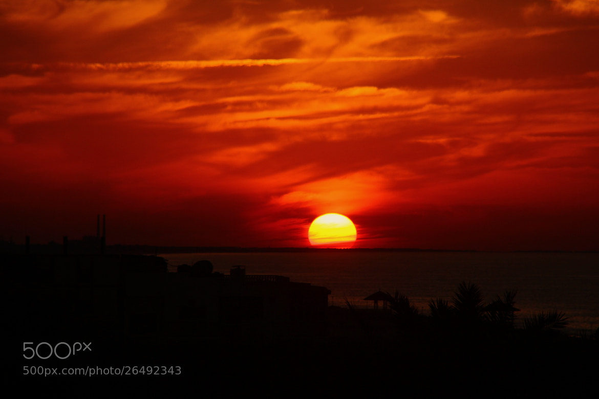 Photograph Black and Sun by Ahmed Waheed on 500px