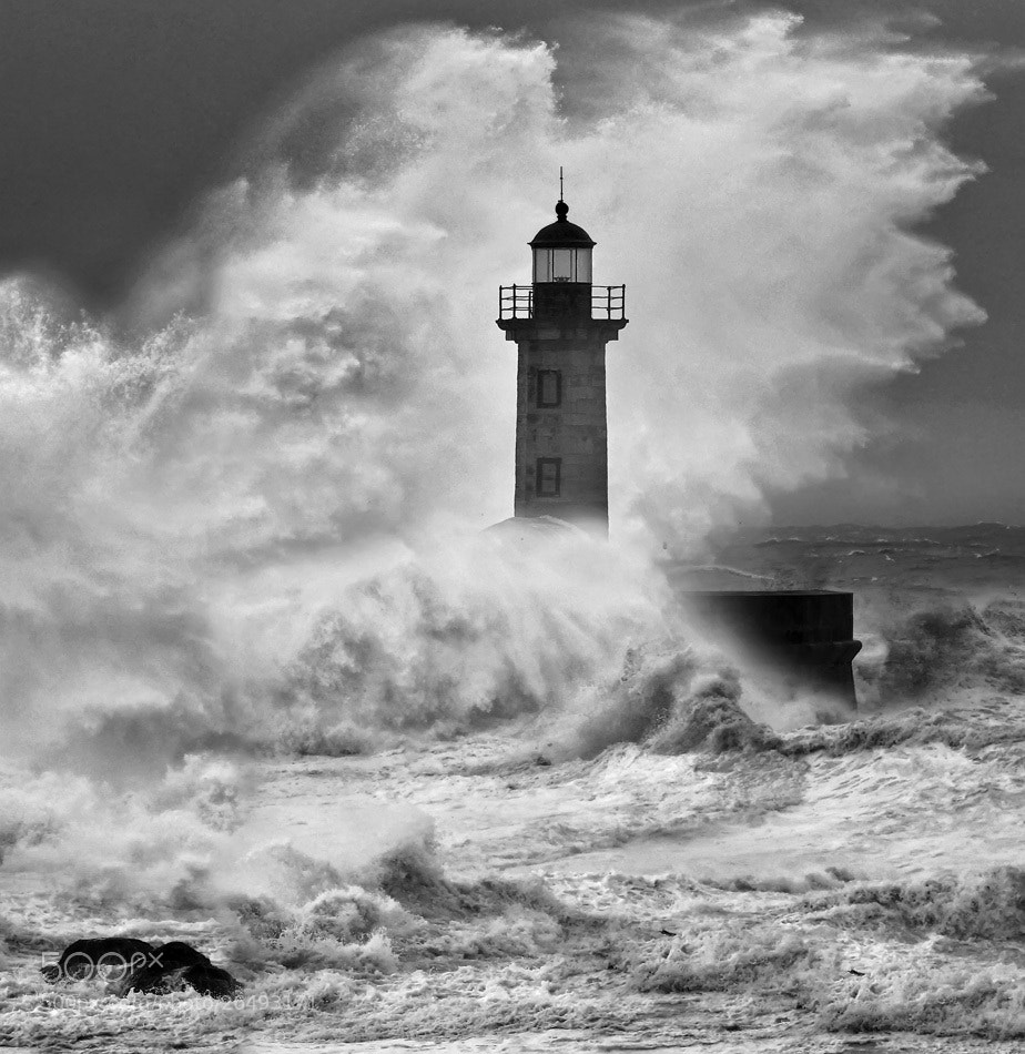 Photograph Chaos and order by Veselin Malinov on 500px