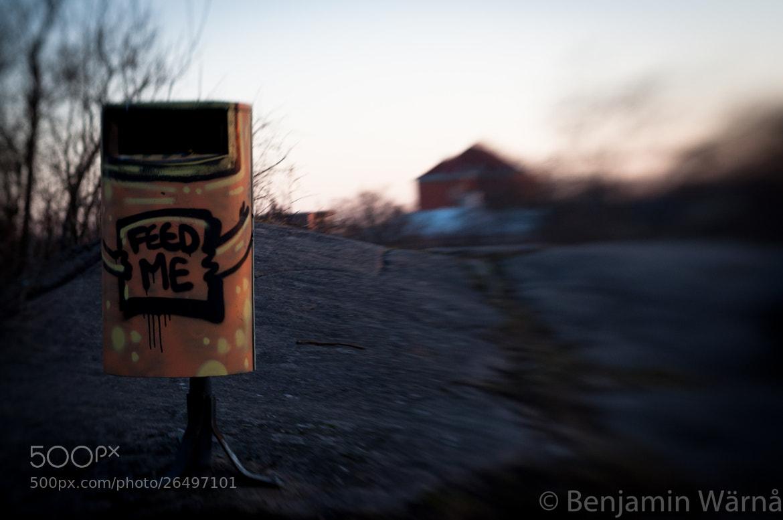 Photograph Feed me by Benjamin Wärnå on 500px