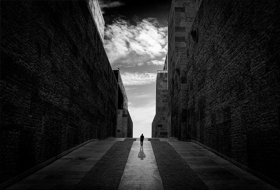 Out of the dark, автор — Inge Schuster на 500px.com