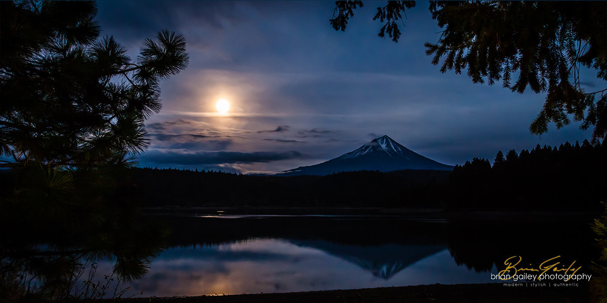 Photograph Willow Lake by Moonlight by Brian Gailey on 500px