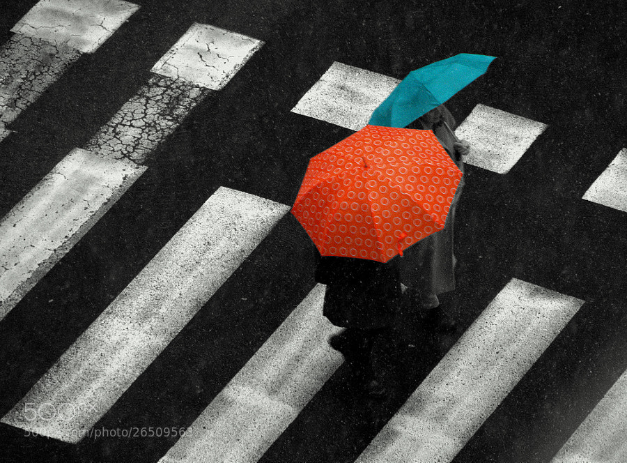 Photograph CrossWalk by Dissonant Poetry on 500px
