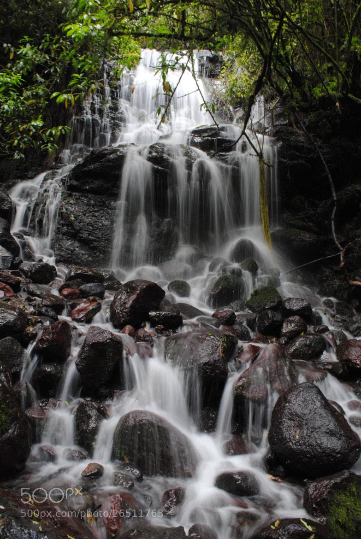 Photograph Rio Pita by Enrico Baldo on 500px