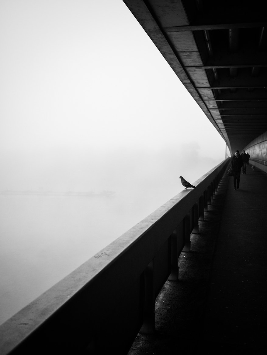 Photograph Suicidal by Martin Hricko on 500px