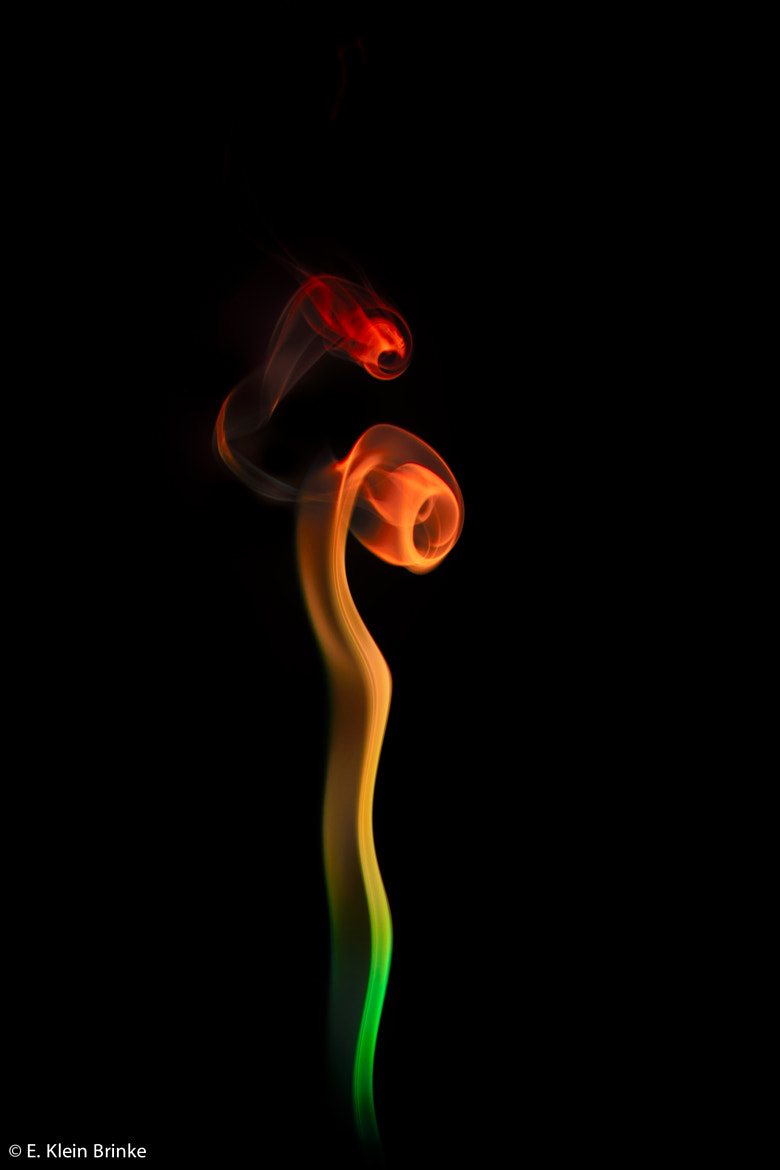 Photograph Smoke Flower by Erik Klein Brinke on 500px